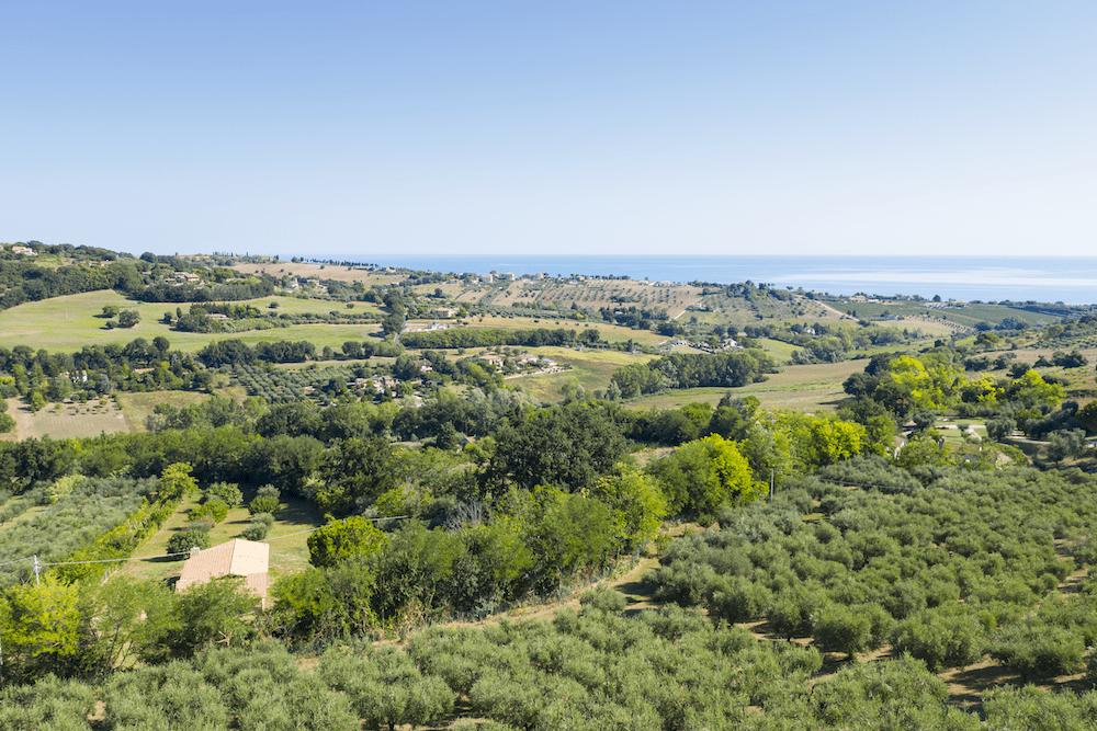 Villa Oliveto