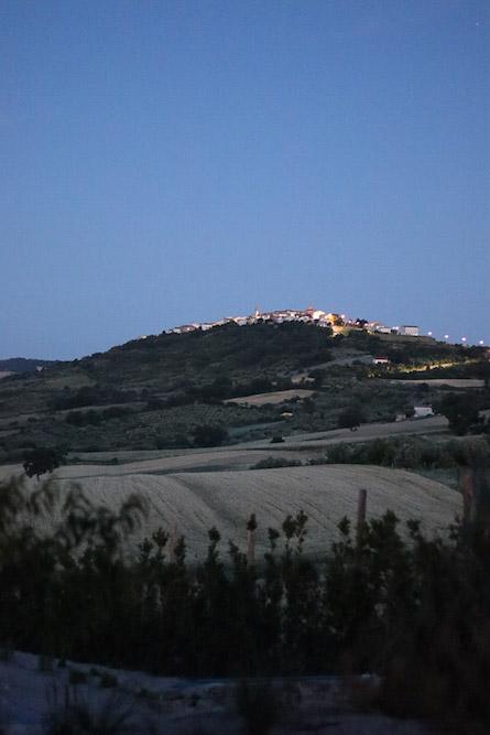 Casa Tuja